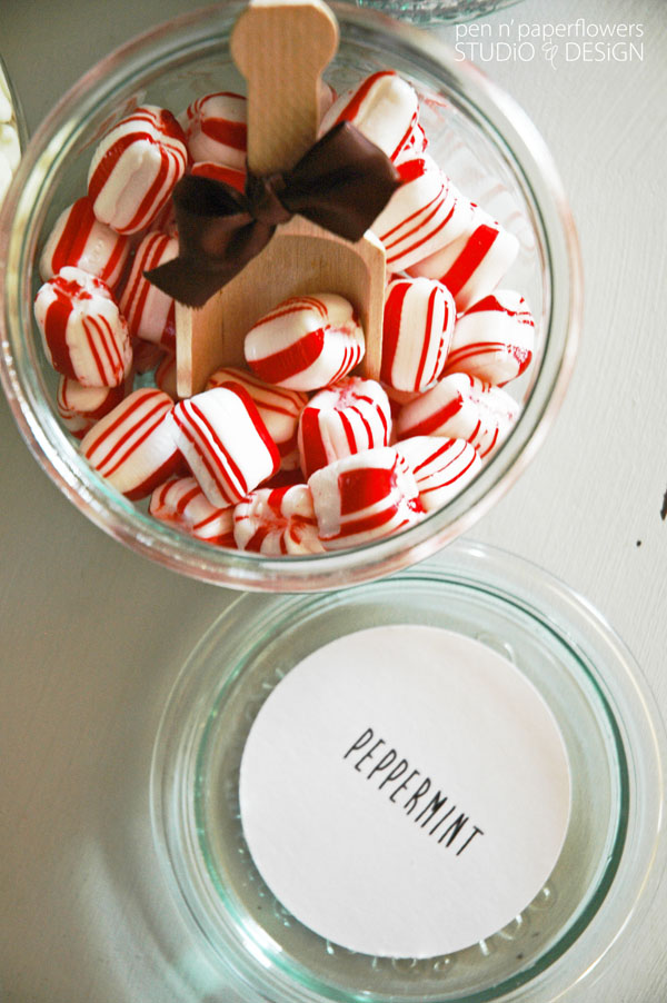 Hot_Chocolate_Peppermint_Topping_0615wm